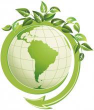 Что такое экология и почему это так важно?