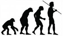 Мясо способствовало эволюции человека