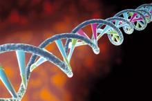 Forensic science and DNA mutation