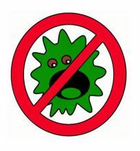 Вирусы, их опасность для организма и как от них защитится?